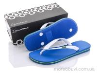 80415 blue-white