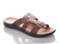 PPolomax-vogi-brown