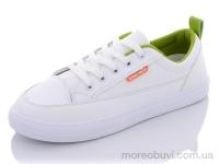 9829B white-green