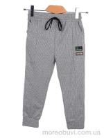 8016 l.grey