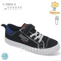 C-T9534-A