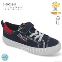 C-T9534-B
