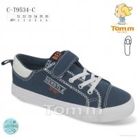 C-T9534-C
