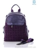 GL081-1 purple