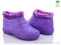 ГП21 фиолетовый